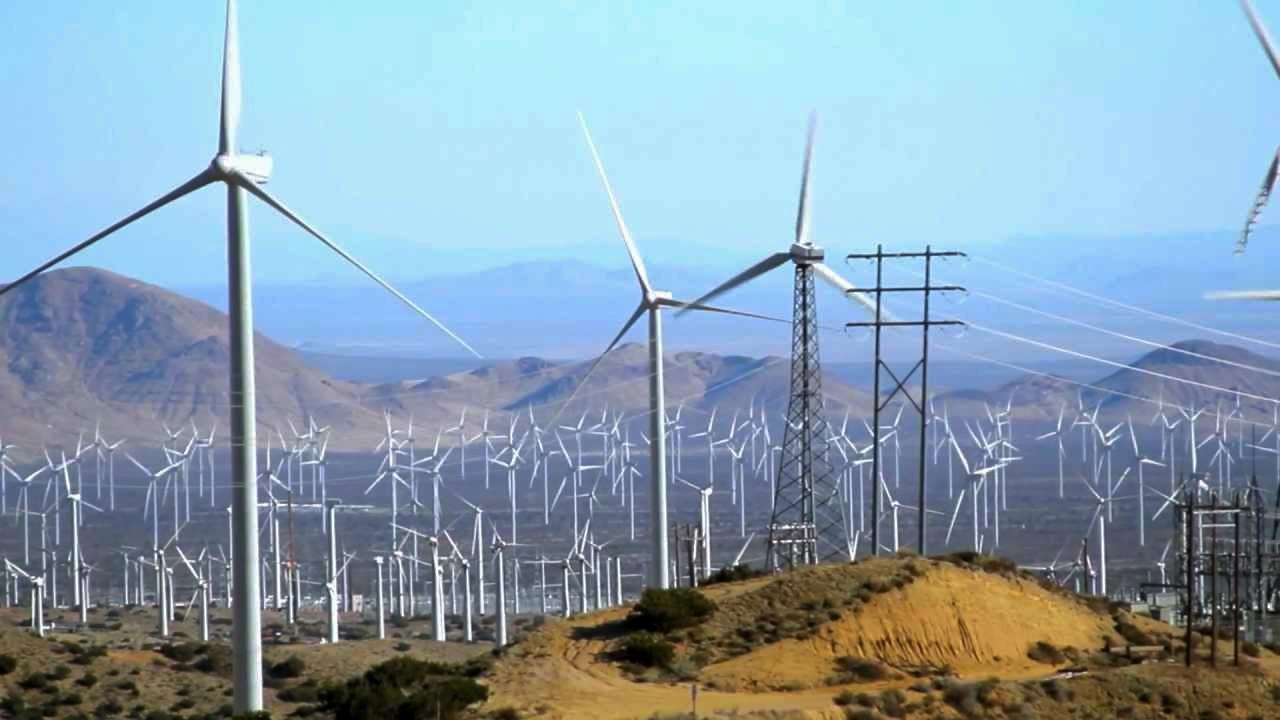 windfarm3